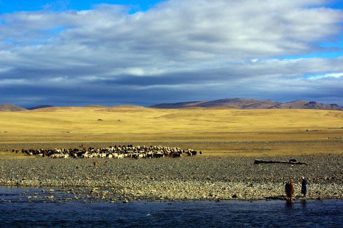 Autumnal Mongolia