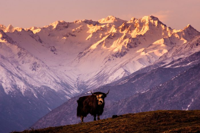 冬季西藏中尼公路10日游